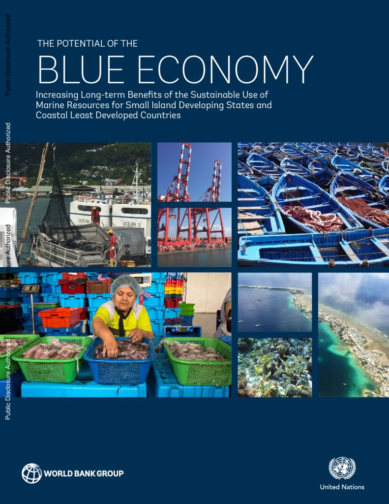 2017. The potential of the blue economy. Banco Mundial
