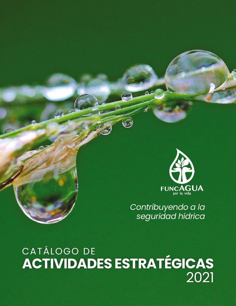 Catálogo de actividades estratégicas